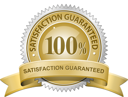 WebDesk Partners | Satisfaction Guarantee | Virtual Assistant For Hire | Website Services